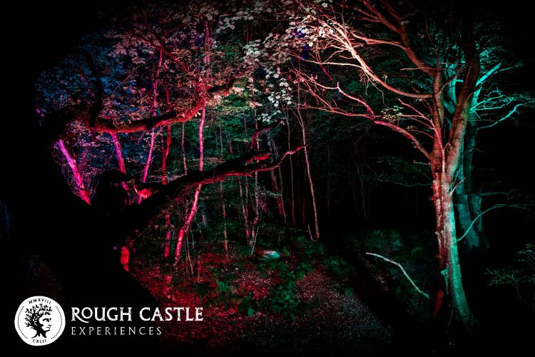 Rough Castle Experiences secures funding to light up Falkirk's woodlands